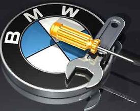 BMW, Mini Diagnostic Scan and coding