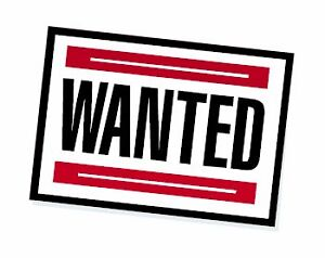WANTED! 4 Bedroom Two Storey in Power's Pond, Mount Pearl St. John's Newfoundland image 1