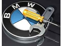 BMW, Mini Diagnostic Scan and coding