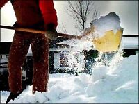 Need snow shovelling? Available at any time and any place!