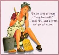 CLEANING FREAK HOME CLEANING SERVICES / 647-724-4714