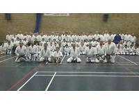 Kyokushin karate class Bridgend
