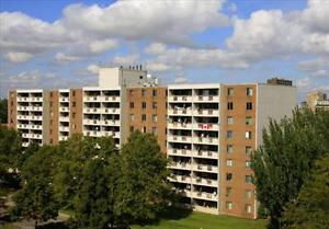 Great 1 Bedroom Apartment for Rent MINUTES TO DOWNTOWN! Windsor Region Ontario image 2