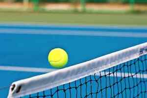 Tennis Court Maintenance-Refurbishment-Cleaning-Franchise North Ward Townsville City Preview