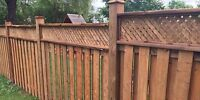 Fence, Deck, Gazebo & More! Skilled Carpenters For Hire