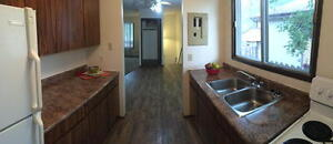 Spacious Pet Friendly 3 BR Town House Available Early October!