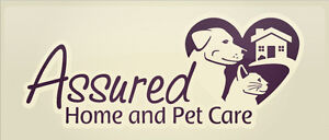 In-home Pet Sitting Services in the Bow Valley