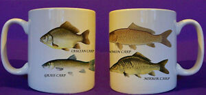Carp-Family-coarse-fishing-angling-mug-personalised