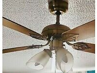 Ceiling Light with Fan