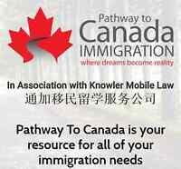 Immigration Consultant Service