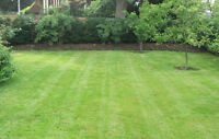 Need your grass / lawn cut? I can help