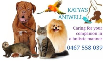 Katya's ANIWELL - Perth Prime Pet-Sitting & -Fitness Serpentine Area Preview