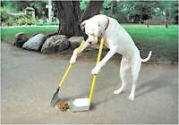Main Event Dog Waste Cleanups