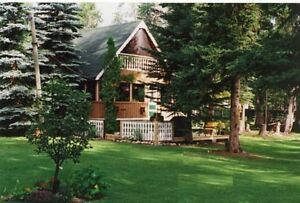 *GULL Lake Be at the Lake NOW! 4-Season Cabin fenced AMAZING lot