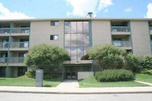 Move in now, no rent for February-2 Bed/1Bath condo in Millwoods
