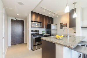 Renovated, furnished, 1 bedroom + den, Downtown, by Skytrain