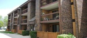 Spacious 2 bedroom renovated condo in River Park South