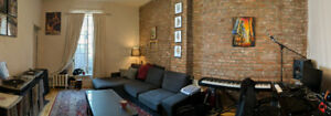 Beautiful 1 bedroom Extremely close to both McGill & Concordia!