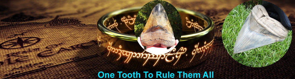 One Tooth To Rule Them All