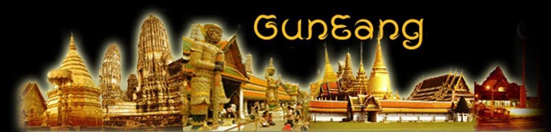 gun_eang_2011_2