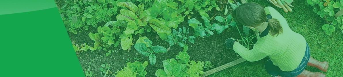 Envii Pond, Home & Garden Products