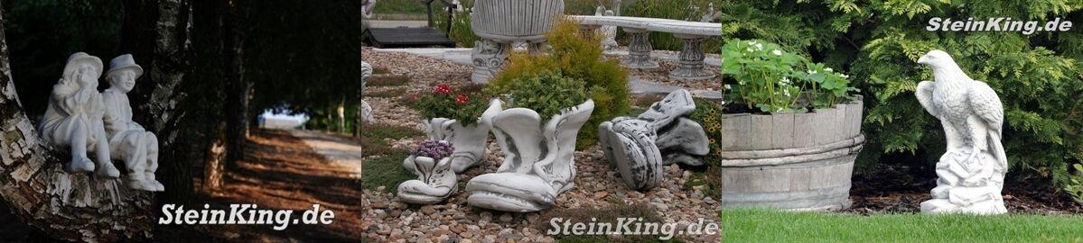 stein-king