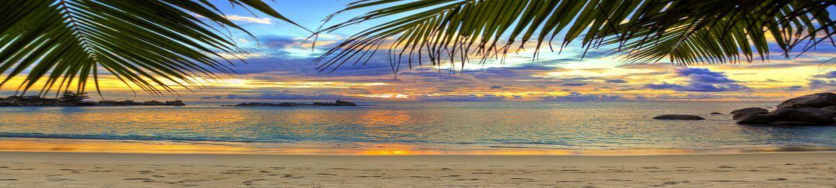 The Beach Shore