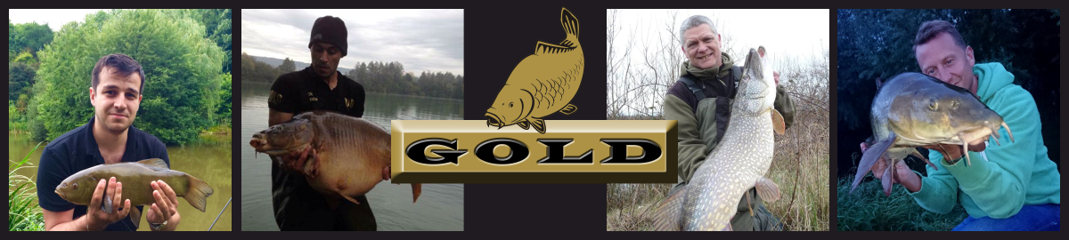 Gold Baits
