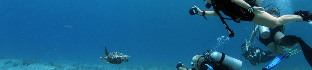 Underwater Sports NW