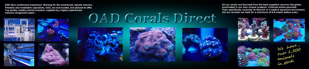 oad.corals.direct
