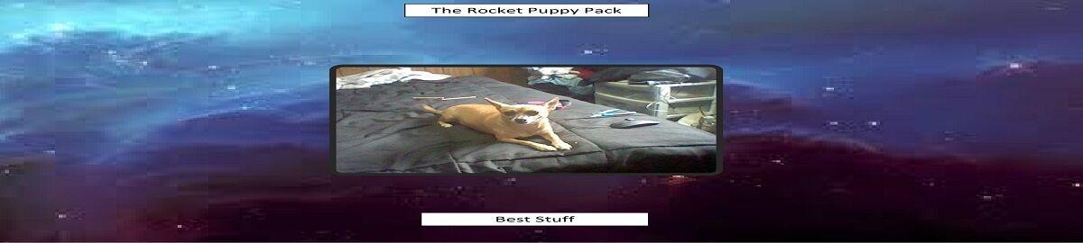 Rocket Puppy