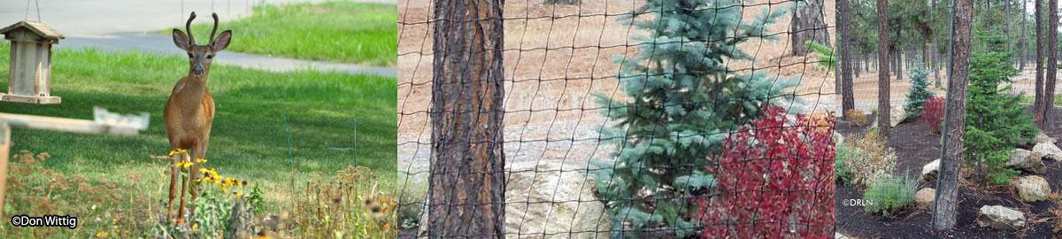 Deer-resistant Landscape Nursery