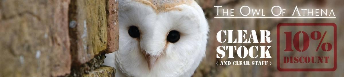 The Owl Of Athena