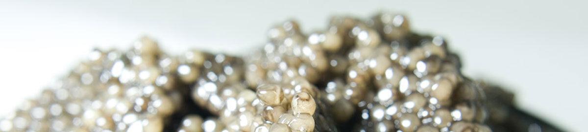 Caviar Tresor Feinkosthandel