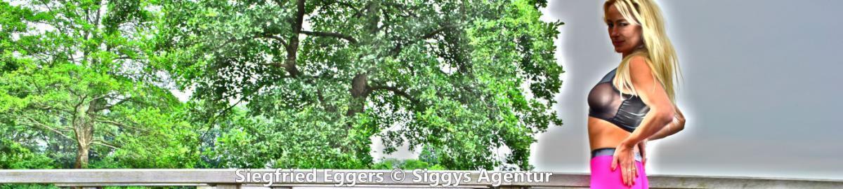 Siggys-Agentur