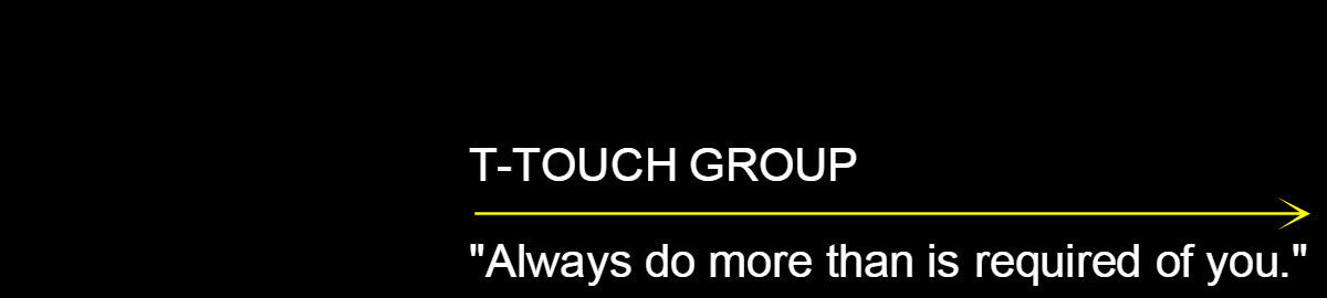 T-TOUCH GROUP