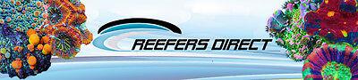 reefersdirect