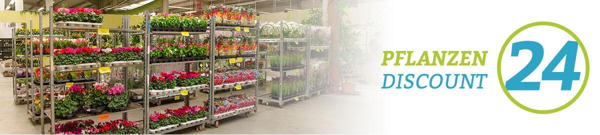 pflanzendiscount24_interflowers