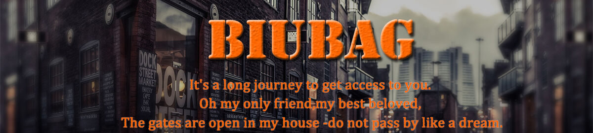 BIUBAG Store