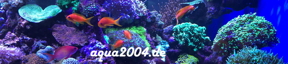 aqua2004.de