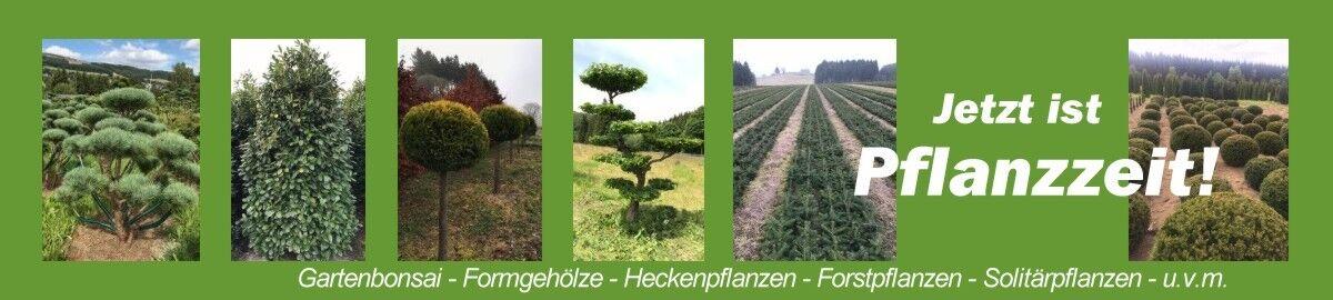 kiehslerpflanzenwelt