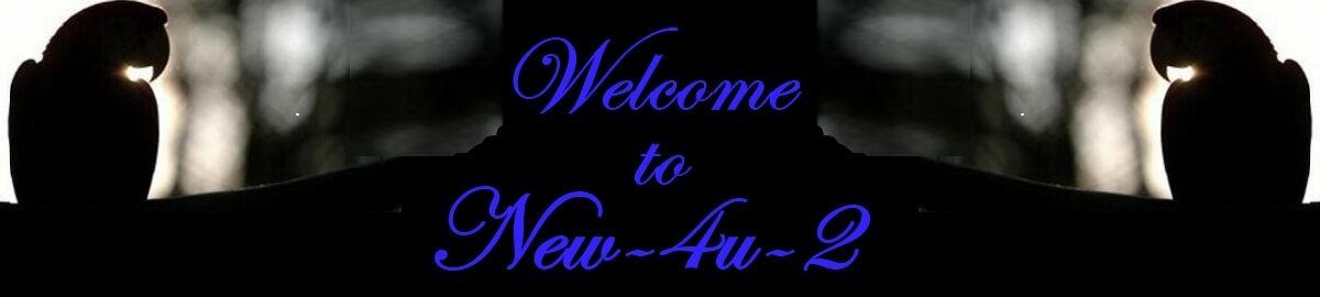 New4u2