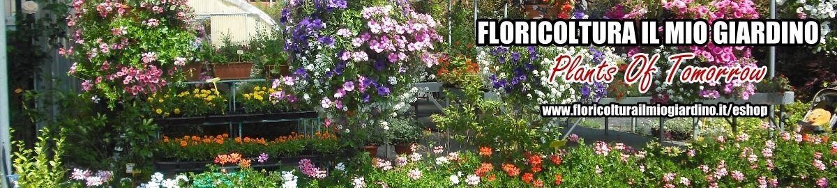 Floricoltura Il Mio Giardino