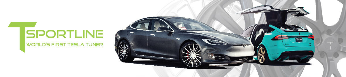 Tesla Accessories and Wheels