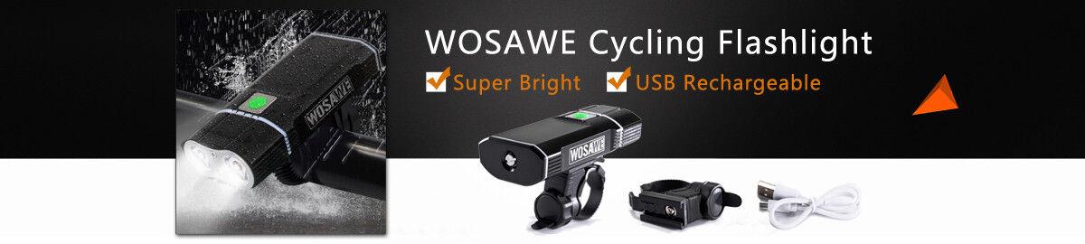 wosawe2015