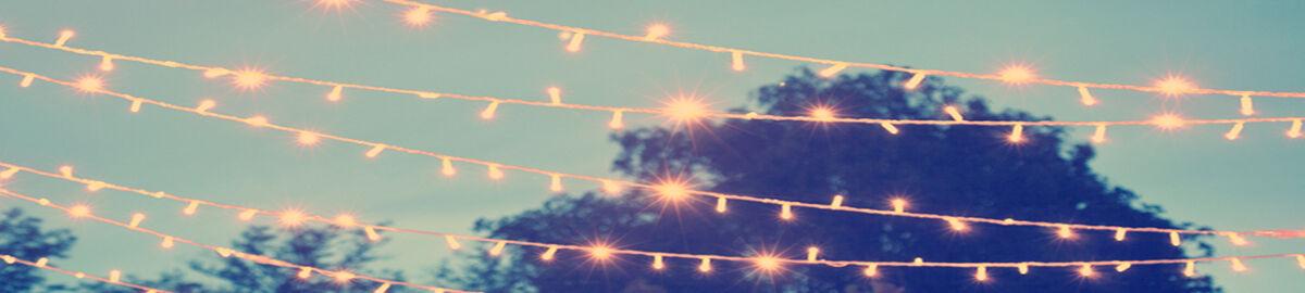 lights4funinc