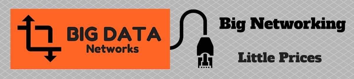 Big Data Networks