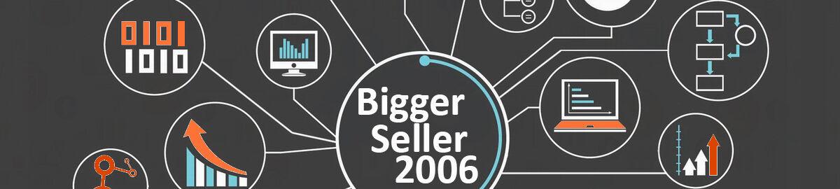 BIGGERSELLER2006
