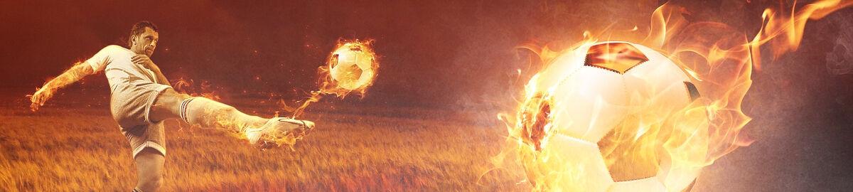 Wir sind Fussballweltmeister