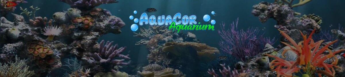 AquaCor Aquarium